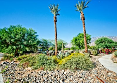 the-springs_012