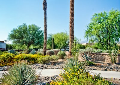 the-springs_013