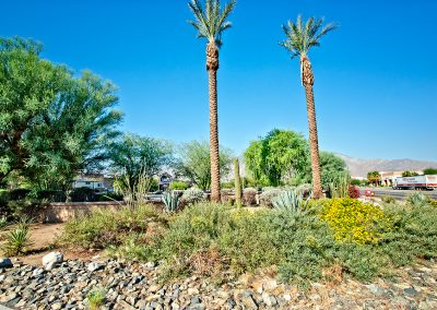 the-springs_014