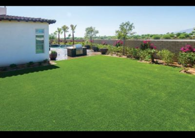 synthetic-turf-landscaping